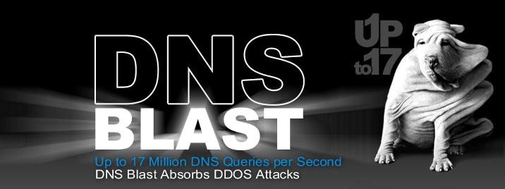 DDOS-DNS_BLAST-EfficientIP